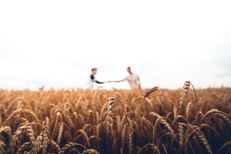 Abundant Sowing, Abundant Harvest (May 21, 2019) - First