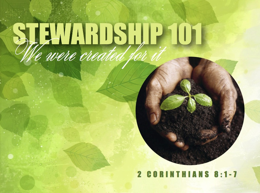 Stewardship 101: We were created for it