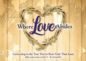 Where Love Abides cover